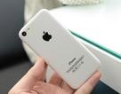iPhone giá rẻ, iPhone 5S xuất hiện tại Việt Nam, ra mắt ngày 10/9?
