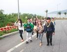 Đà Nẵng: Khám phá hành trình Sơn Trà du ký