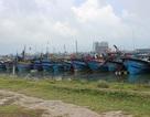 Lai dắt tàu chở gạo gặp nạn vào bờ an toàn