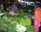 Thí điểm chợ đảm bảo vệ sinh an toàn thực phẩm