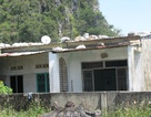 Đà Nẵng: Sống khổ sở vì dự án trên giấy