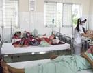 Vụ ngộ độc bánh mì ở Vĩnh Long: Do chả lụa nhiễm vi sinh