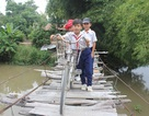Hàng trăm học sinh thấp thỏm khi phải qua cây cầu sắp sập