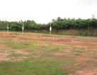 """Bất động sản Nhơn Trạch """"nở hoa"""", dân đổ xô đi làm """"cò"""" đất"""