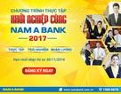 Thực tập và nhận lương tại Nam A Bank