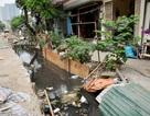 Mương 1km làm mãi không xong, người dân sống chung với nước thải