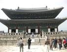 Tham quan Cung điện Hoàng gia Gyeongbok ở Hàn Quốc