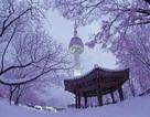 """Đến Hàn Quốc, thăm """"Tháp tình yêu"""""""