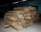 Phát hiện kho gỗ hàng trăm mét khối không rõ nguồn gốc