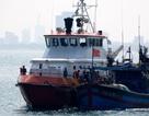 9 ngư dân gặp nạn trên biển đã về đất liền an toàn