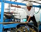 Tàu hải cảnh Trung Quốc hăm dọa thế nào cũng phải đi biển
