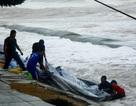 Bãi biển Cửa Đại tiếp tục sạt lở nặng