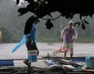 Dân nuôi cá lồng bè thiệt hại nặng do xả lũ không báo trước?