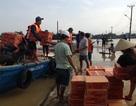 Hội An cứu trợ khẩn cấp người dân các xã vùng thấp trũng