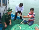 Tàu cá của ngư dân bị tàu nước ngoài tấn công, phá hỏng ngư lưới cụ