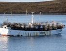 Vụ mất tích của tàu cá Đài Loan ngày càng bí ẩn