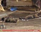 Hãi hùng cảnh các thi thể la liệt trên phố sau cuộc xâm chiếm của IS