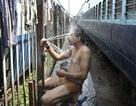 500 người chết vì nắng nóng ở Ấn Độ