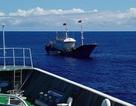 Thuyền trưởng tàu cá Trung Quốc lĩnh án tù vì đánh bắt trộm san hô