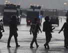 Ả-rập Xê-út bắt 431 người bị nghi là thành viên của IS