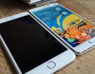 Những lý do bạn chưa nên mua iPhone 6 và iPhone 6 Plus tại thời điểm hiện nay