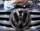 Nếu được phép, CEO Tesla sẽ trừng phạt Volkswagen thế nào?