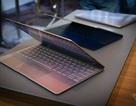 So sánh laptop mỏng nhất thế giới của Asus với Macbook mới nhất của Apple
