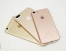 Lộ thông số dung lượng pin của iPhone 7 và iPhone 7 Plus