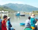 Lật thuyền chở 3 thanh niên, một người mất tích