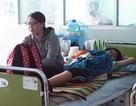 """Cuối năm, sốt xuất huyết ở Khánh Hòa vẫn """"leo"""" thang"""