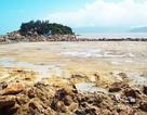 Hình ảnh dự án bị nghi lấp danh thắng quốc gia Vịnh Nha Trang