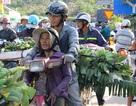 Chợ chuối lớn nhất Nam Trung Bộ chỉ họp vào dịp Tết