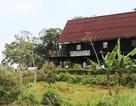 """Chủ tịch Khánh Hòa chỉ đạo kiểm tra nhà hàng """"chui"""" trong khu bảo tồn"""