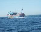 Cứu 13 ngư dân trên tàu cá bị hỏng máy ở Trường Sa
