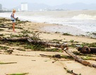 """Hàng tấn rác dạt về """"bãi biển hấp dẫn hàng đầu thế giới"""""""
