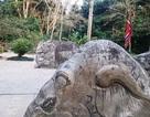 Tượng voi trong lăng vua Lê Thái Tổ bị viết, vẽ bậy