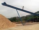 Thanh Hóa: Loạn các cơ sở chế biến dăm gỗ không phép