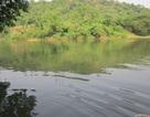 Vụ nước sông đổi màu, cá chết: Hai tỉnh cùng vào cuộc