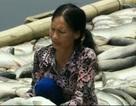 """Vụ cá chết trên sông Bưởi: """"Thủ phạm"""" thống nhất đền bù cho dân"""