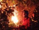 Hàng trăm cán bộ chiến sĩ chữa cháy rừng trong đêm