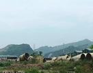 Dừng hợp đồng xử lý 400 tấn bùn thải nguy hại của Formosa