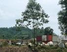 Công ty môi trường Nghi Sơn xử lý rác thải cho Formosa?