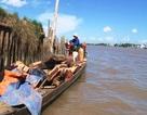 Phát hiện người Campuchia vận chuyển gỗ lậu quý vào Việt Nam