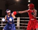 Lừu Thị Duyên thẳng tiến ở giải boxing các VĐV xuất sắc toàn quốc 2014