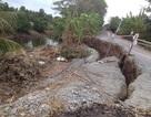 Đê bao rừng Quốc gia U Minh Thượng sạt lở nghiêm trọng