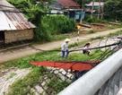 Kiên Giang: Dây điện và dây cáp thành bẫy rình rập người đi đường