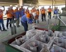 Lần đầu tiên Việt Nam xử lý thành công chất thải gây thủng tầng ô-zôn