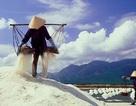 Phó Thủ tướng lệnh mua tạm trữ muối để cứu diêm dân