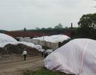 Kiểm tra việc nhà máy chế biến rác thải Việt Trì gây ô nhiễm