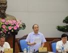 Thủ tướng phê bình cán bộ vô trách nhiệm trong vụ Formosa